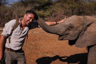 TV tonight Walking With Elephants