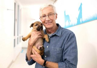 TV tonight Paul O'Grady For the Love of Dogs: What Happened Next
